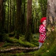 Child hid behind a tree — Stock Photo