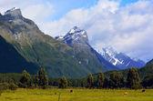 Landscape of Glenorchy New Zealand — Stock Photo