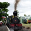 Постер, плакат: Bay of Islands Vintage Railway Kawakawa NZ