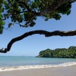 Stock Photo: Doubtless bay Northland New Zealand