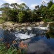 Stock Photo: KeriKeri - New Zealand