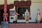 Las mujeres maoríes cantan y bailar — Foto de Stock