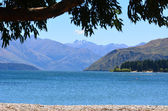 Wanaka - New Zealand — Stock Photo