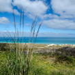 Stock Photo: Karikari Peninsul- New Zealand