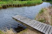 Wooden jetty — Стоковое фото