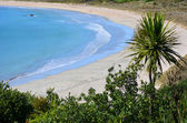 Matai Bay Karikari Peninsula - New Zealand  — Stock Photo