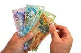 New Zealand Dollar banknotes — Stock Photo