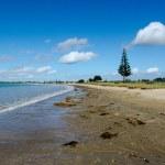 Karikari Peninsula - New Zealand — Stock Photo