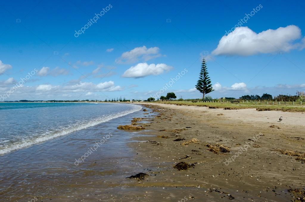 Karikari Peninsula New Zealand  City new picture : Karikari Peninsula New Zealand — Stock Photo © lucidwaters ...