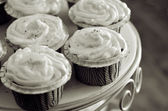 Cupcakes and Cakes — Stock Photo