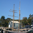 Постер, плакат: Yacht sail in the Bay of Islands New Zealand