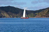 Yacht sail in the Bay of Islands New Zealand — Stock Photo