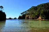 Roberton Island in the Bay of Islands New Zealand — Foto de Stock