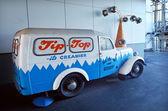 наконечник верхний мороженое завод — Стоковое фото