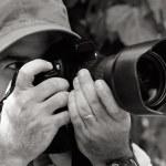 Nature and Wildlife Photographer — Stock Photo #49293253