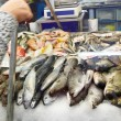 Choosing fresh fish - Photo