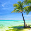 Beach on summer - Stock Photo