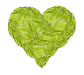 Healthy green heart made with green leaves — Stock Photo