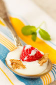 Strawberry pieces with cereals and yogurt in spoon — Stock Photo