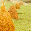 Big haystacks on green grass — Stock Photo