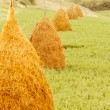 Stock Photo: Big haystacks on green grass