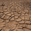 Cracked by the heat long lifeless soil — Stock Photo