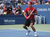 Seventeen times Grand Slam champion Roger Federer practices for US Open at Billie Jean King National Tennis Center — Stock Photo
