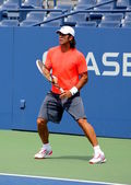 Professional tennis player Fernando Verdasco practices for US Open at Billie Jean King National Tennis Center — Stock Photo