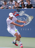 Grand Slam champion Andy Roddick practices for US Open at Billie Jean King National Tennis Center — Stok fotoğraf