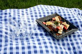 At the picnic — Stockfoto
