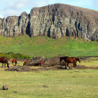 Wild horses grazing next to fallen moai, Easter Island - Stock Photo