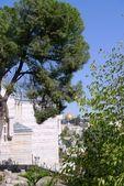 Old City of Jerusalem, side view — Stock Photo