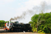 Rovos Rail train about to depart from Capital Park Station in Pretoria, South Africa — Stock Photo