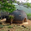 Stock Photo: Isangomhouse in Shakaland Zulu Village in Kwazulu Natal province, South Africa. Isangomis witch doctor and traditional Zulu healer.