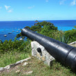 Old cannon on top of GustaviHarbor, St. Barths, French West indies — Stock Photo #22203681