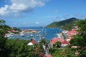 Gustavia hamnen, st. barths, franska västindien — Stockfoto