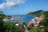 Gustavia harbor, st. barths, fransız batı hindistan — Stok fotoğraf