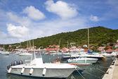 Barcos em gustavia marina com casas coloridas no fundo, são bartolomeu, francês índias ocidentais — Foto Stock