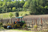 Worker cultivates soil in vineyard by tractor with disc narrows in Napa Valley, California — Stock Photo