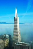 Areal view on Transamerica pyramid and city of San Francisco covered by dense fog — Stock Photo