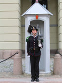 :Royal Guard guarding Royal Palace in Oslo, Norway — Stock Photo