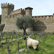 Castello di Amorosa Winery in Napa Valley. - Stock Photo