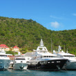 Stock Photo: Megyachts in GustaviHarbor at St. Barths