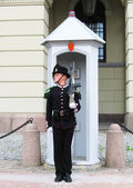 Royal Guard guarding Royal Palace in Oslo, Norway — Stock Photo