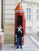 Royal Guard guarding Amalienborg Castle in Copenhagen, Denmark — Stock Photo