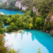 The beautiful lakes cascade in Plitvice National Park, Croatia — Stock Photo #24807213