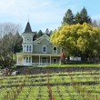 St. Clement Vineyards in Napa Valley - Stock Photo