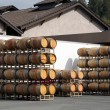 Oak barrels at the vineyard — Stock Photo