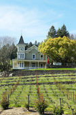 St. Clement Vineyards in Napa Valley — Stock Photo
