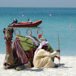 Stock Photo: Bedouin with camel on the beach in Dubai